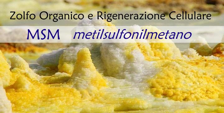Metilsulfonilmetano
