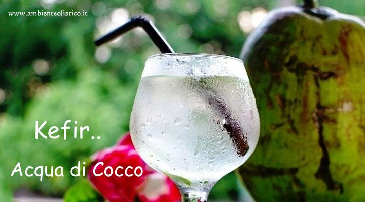 Kefir Acqua di Cocco