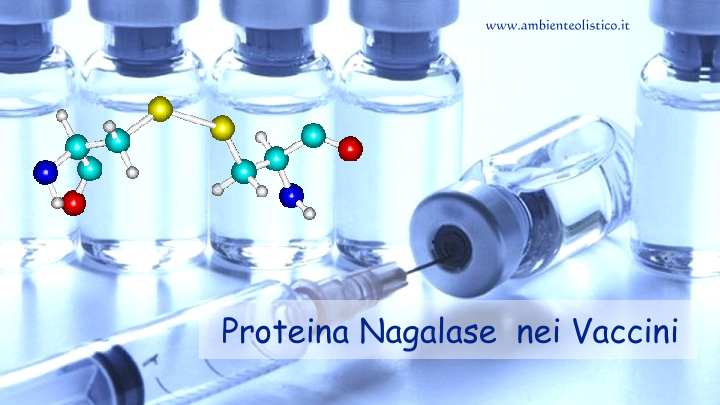 Proteina Nagalase nei Vaccini