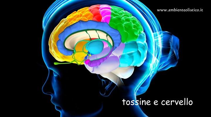 Sostanze Tossiche per il Cervello